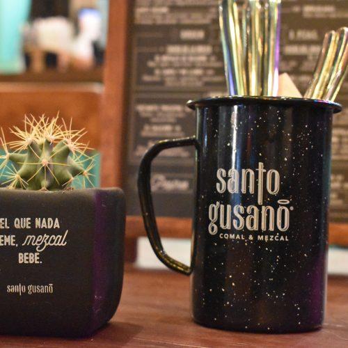 4. Santo_Gusano_AMB2